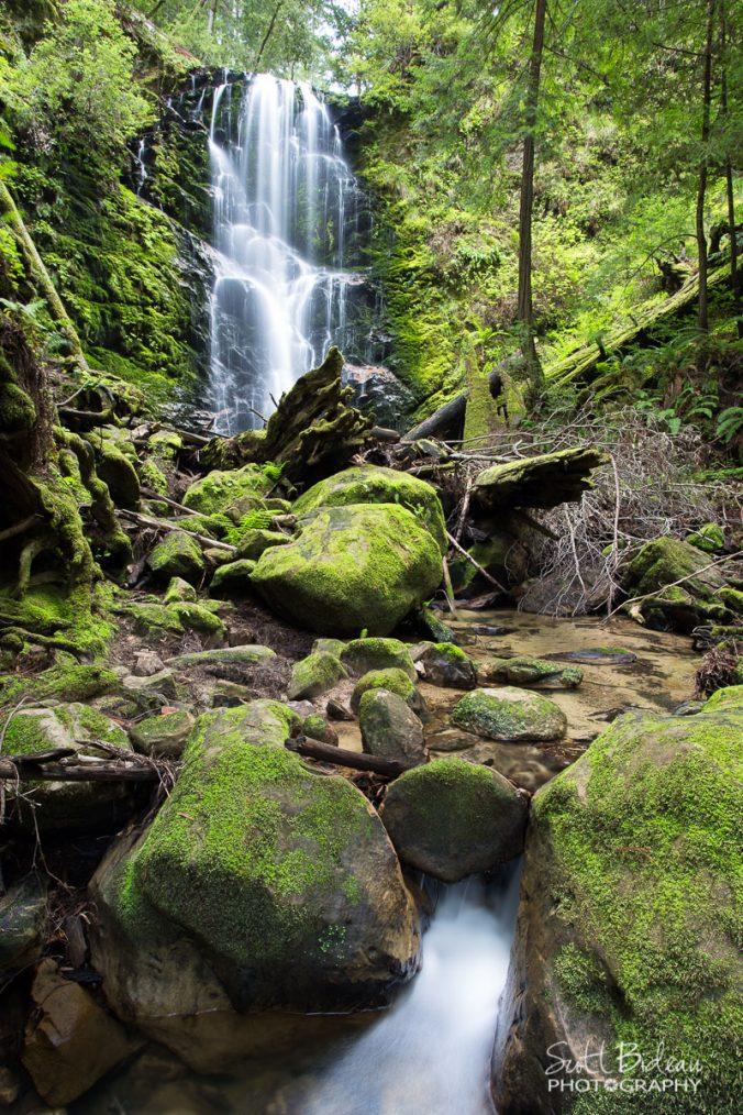 Berry Creek Falls, Big Basin State Park, California